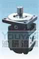 CMGt2040-BFHS CMGt2040-BFXS 油研齿轮马达 YOUYAN齿轮马达