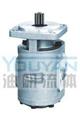 CMGh2050-BF*S CMGh2063-BF*S  油研齿轮马达 YOUYAN齿轮马达