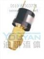 Y300BP Y300DP Y300EP 油研压力控制器 YOUYAN压力控制器