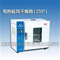 电热鼓风干燥箱250度