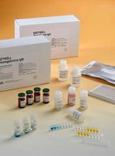 大鼠胰岛素样生长因子2(IGF-2)ELISA试剂盒批发