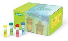 鱼类甲状腺素(T4)ELISA试剂盒哪家好