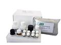 牛丁型肝炎IgG,青海牛丁型肝炎IgGELISA试剂盒