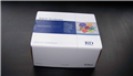 仓鼠活化蛋白C抵抗素ELISA试剂盒