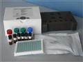 仓鼠胱天蛋白酶激活的脱氧核糖核酸酶ELISA试剂盒