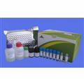 仓鼠维生素D3ELISA试剂盒
