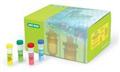 小鼠内毒素(ET)ELISA试剂盒