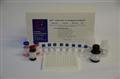 小鼠对氨基苯甲酸(PABA)ELISA试剂盒