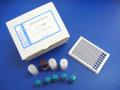 鸡热休克蛋白60(Hsp-60)ELISA试剂盒说明书