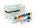 兔子凝血因子Ⅱ(FⅡ)ELISA试剂盒批发