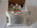 人碱性胎儿蛋白ELISA试剂盒