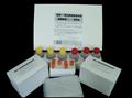 小鼠血栓素B2ELISA试剂盒