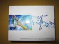 IL-16人白介素16(IL-16)ELISA试剂盒
