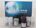 猪辛型肝炎病毒(TTV-Ab)ELISA试剂盒