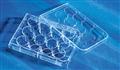corning康宁细胞培养板