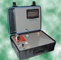 Model S312 便携式气相色谱仪(Model S312)