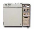 GC-960(标配)气相色谱仪