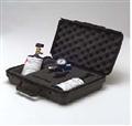 气体分析仪标准工具包  Universal Calibration Kit