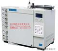GC-7800气相色谱仪