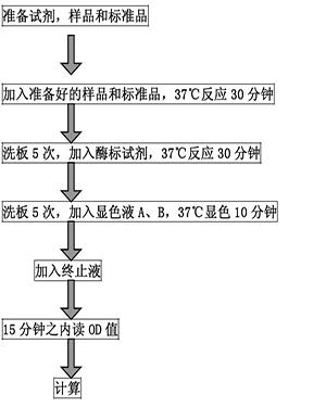鸡白细胞介素6(IL-6)elisa试剂盒